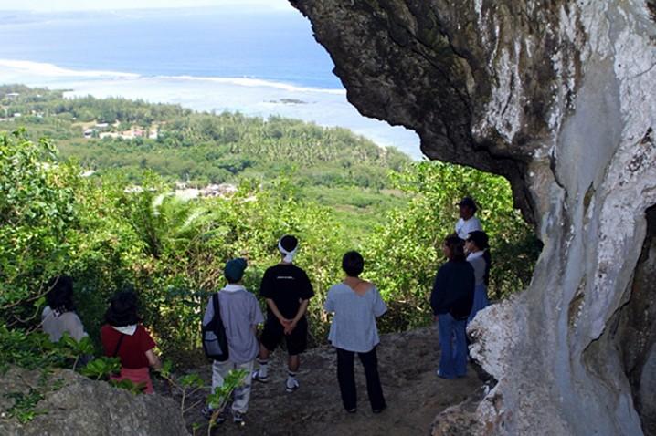 turtle-jungle-hiking