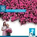 Festa della Mamma 2012