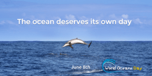 World Oceans Day – What's it got to do with me?
