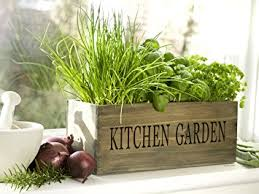 kitchen garden