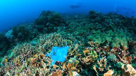 ocean plastics getty