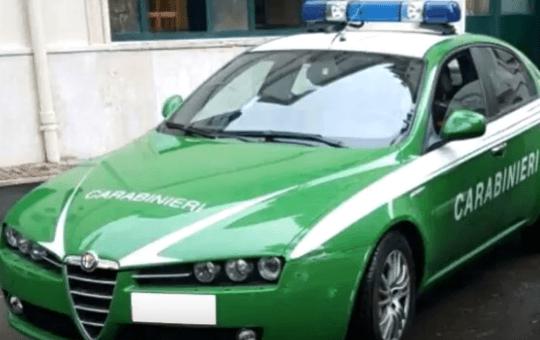 Ceraso, blitz dei Carabinieri del Parco - Gwendalina.tv