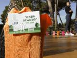 Castellabate, 56 alberi per i nati nel 2018 - Gwendalina.tv