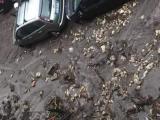 Sarno, torna il terrore dell'alluvione: 300 sfollati - Gwendalina.tv