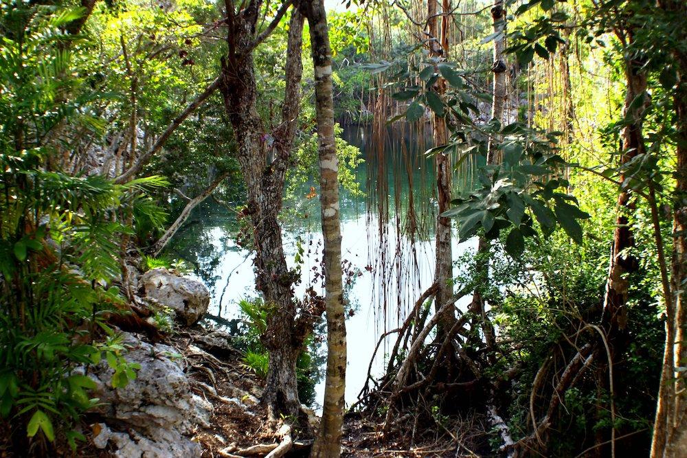cenote at Xel-Ha