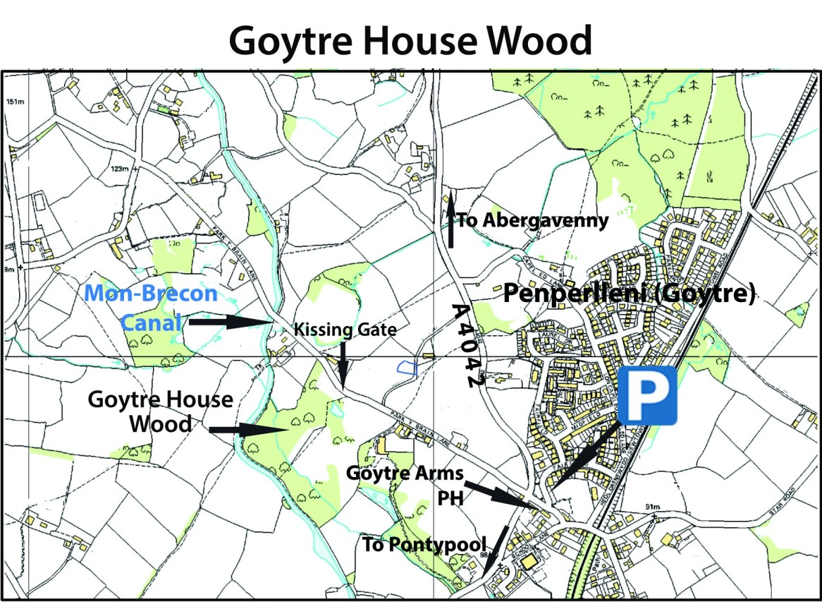 Goytre House Wood map