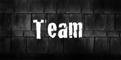 team250x125-kopie