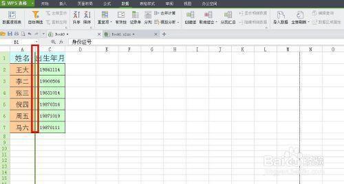 WPS技巧:[10]如何復制除了隱藏行列之外的數據