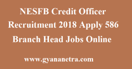 NESFB Credit Officer Recruitment