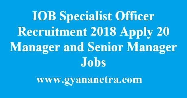 IOB Specialist Officer Recruitment