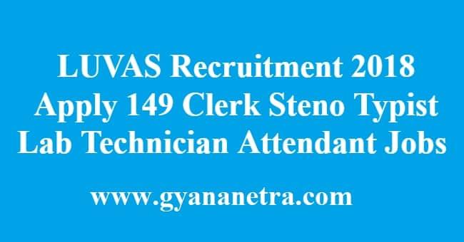 LUVAS Recruitment