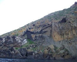 Photo: The shoreline of Ustica is mostly cliffs of sheer rock. Credit: Lisa Borre.