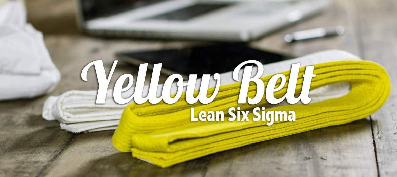 Certificación Lean Six Sigma