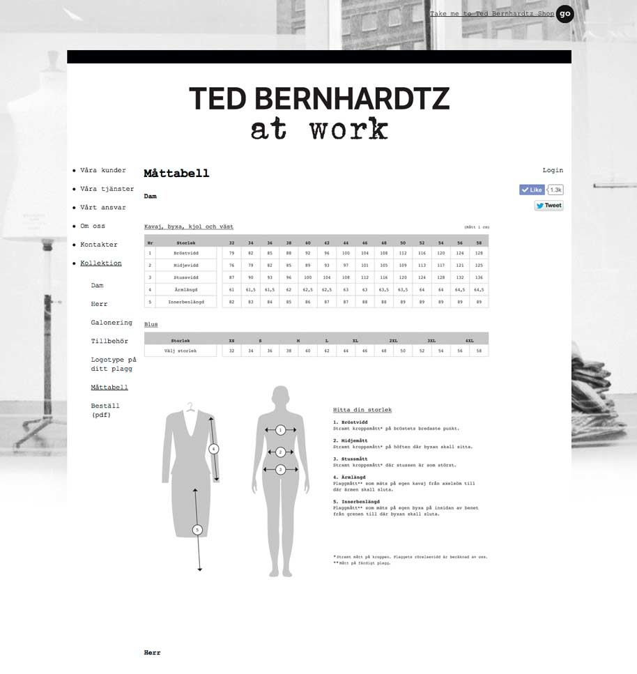 Ted_b_at_work_website_12