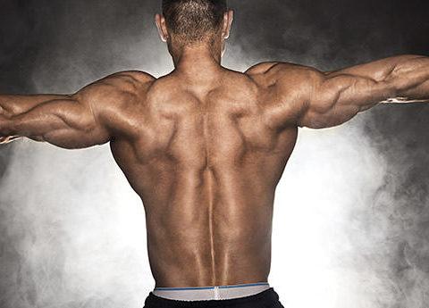 Gymbeginner 健身入門 | 健身教學