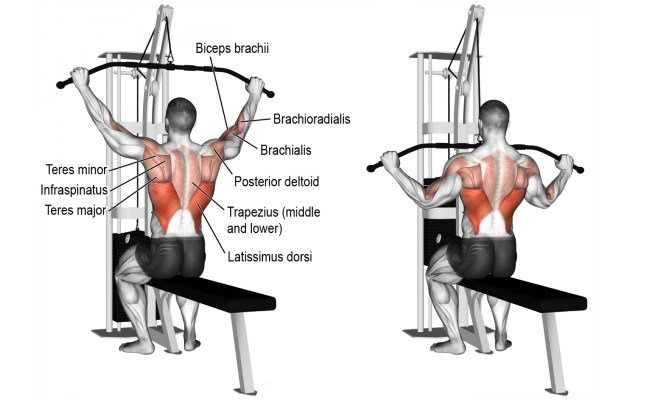 4 Lat Pull Down Exercises For A Well Built Stronger ...
