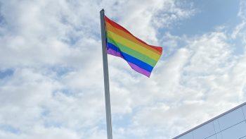 Permalink zu:Regenbogenflagge