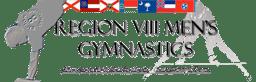 Region 8 Men logo small