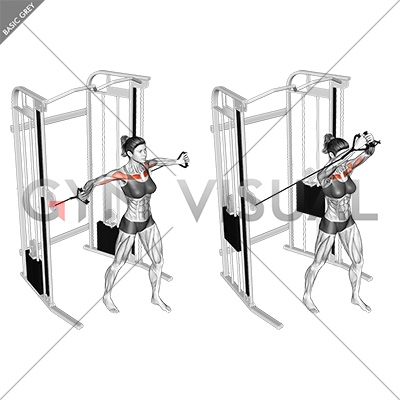 Cable Upper Chest Crossovers (female)