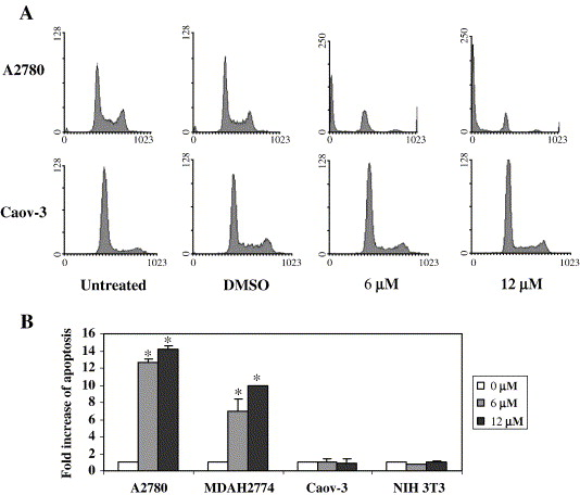 A small molecule compound inhibits AKT pathway in ovarian