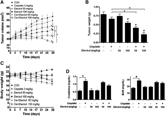 Brown algae phlorotannins enhance the tumoricidal effect