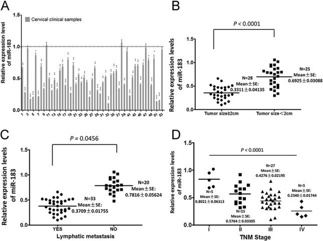 MicroRNA-183 functions as the tumor suppressor via