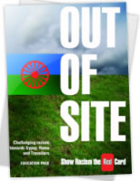 thumbnail of report cover for 'out of site'