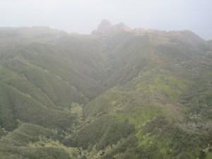 the lush terrain