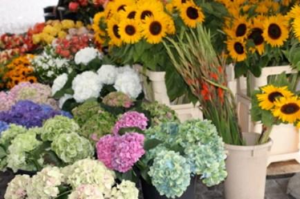 a market in Zurich