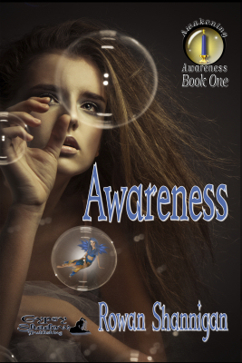 Awareness by Meridian Mychaels