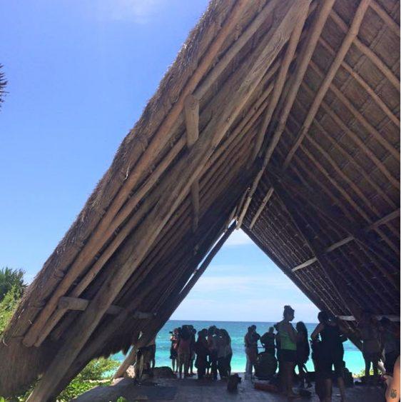 Papaya Playa Yoga