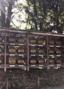 Saki at Meiji Shrine