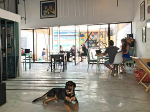 Tulum Art Club- The Best Shared Workspaces in Tulum