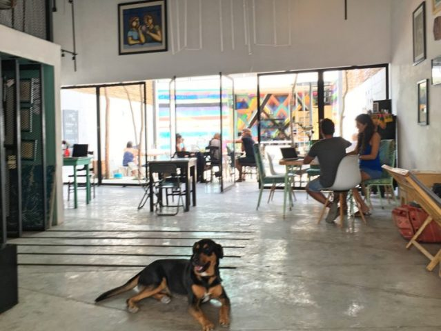 Tulum Art Club- The Best Shared Workspaces in Tulum