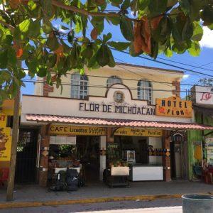 Campanella Cremerie and Flor de Michoacan