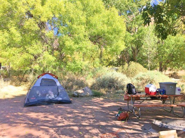 Camping at Zion National Park
