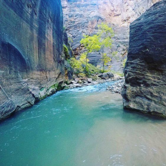 Zion Narrows Blue water