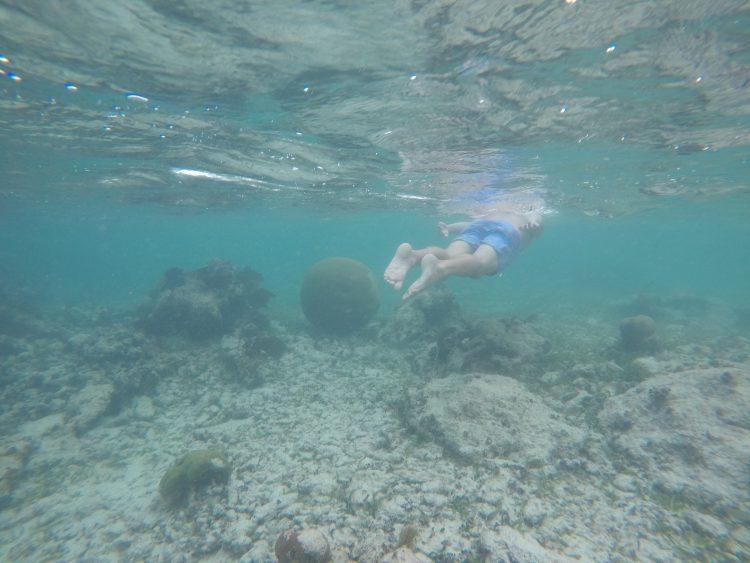 soliman bay snorkeling