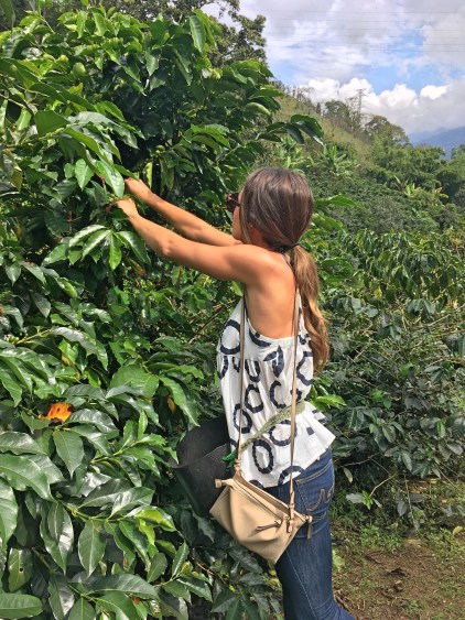 coffee farm visit