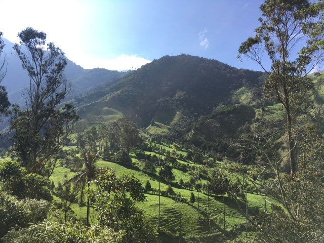 salento colombia valley hike