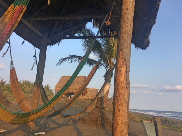 hammocks in paredon