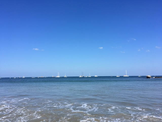 sailboats tamarindo