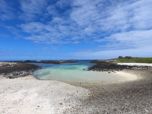 galapagos beach san cristobal.JPG