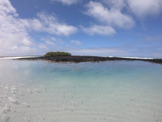 galapagos pool