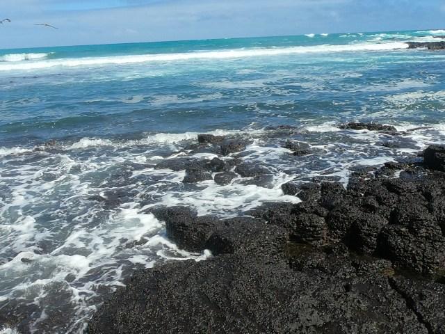 galapagos rocks