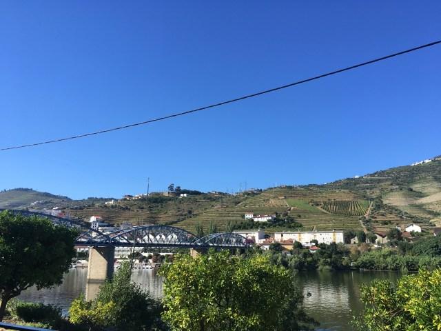 wine tasting room portugal