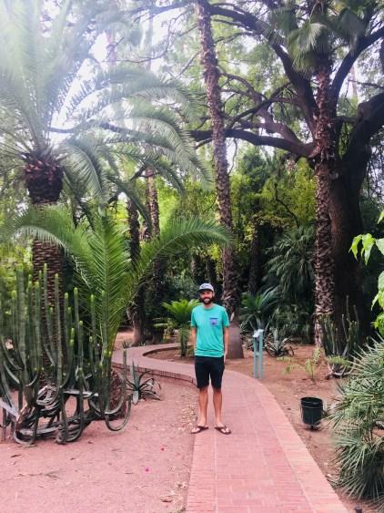 ysl morocco garden
