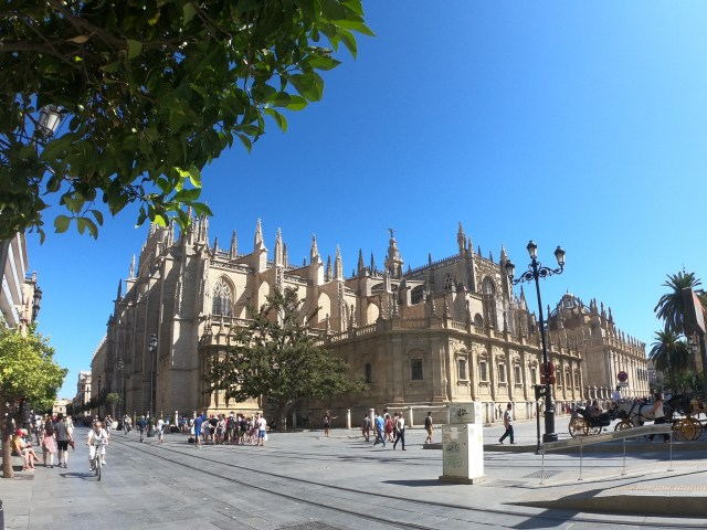 cathdreal sevilla