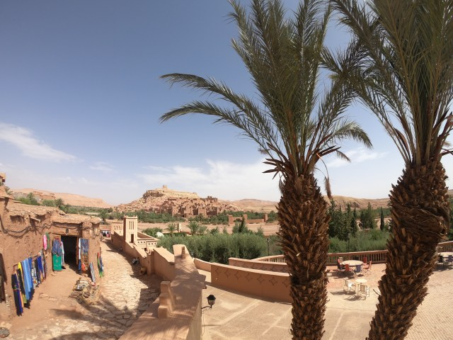palm trees ait benhaddou