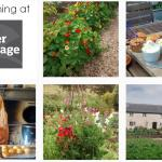 A Morning at River Cottage